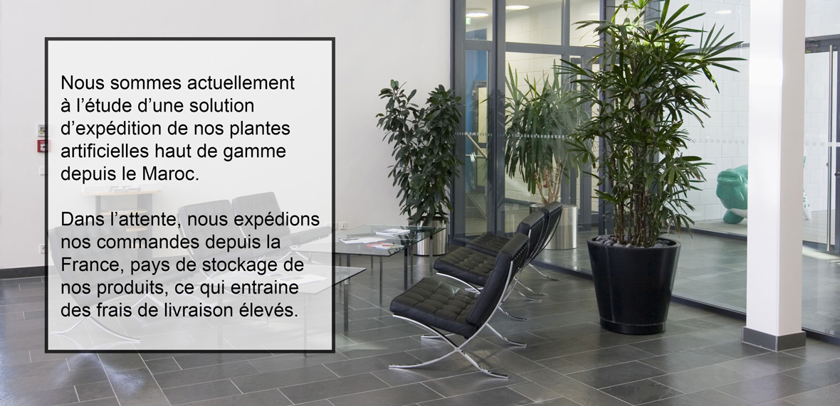 Fleur et plante artificielle au maroc for Plantes artificielles occasion